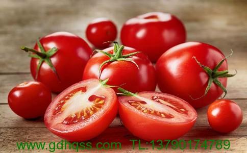 西红柿2.jpg