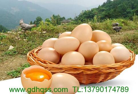土鸡蛋.jpeg